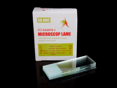 Microscope Slide