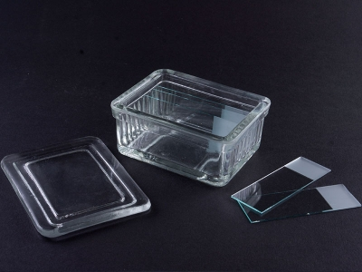 Glass staining jar with lid for 10 slides